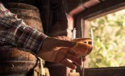 Los enoturistas se enamoran de las Rutas del Vino de España y aumentan su gasto y estancia.